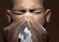 Аллергия наживотных
