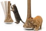 как сделать так, чтобы кошка не точила когти
